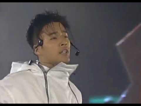 K-POP 1997년 Ref 마지막잎새