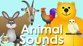 Best Animal Sounds Song Part 2