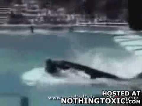 Nothingtoxic