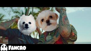 Pedro Capó - Farruko - Calma Cover Perros (Official Video)
