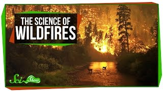 The Science of Wildfires