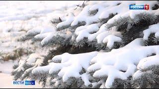 В Омск уже завтра придет календарная зима