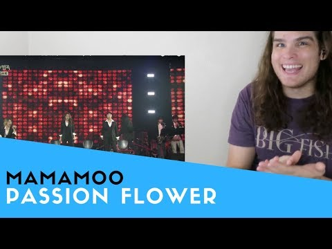 Voice Teacher Reacts to MAMAMOO - Passion Flower (마마무 - 정열의 꽃)
