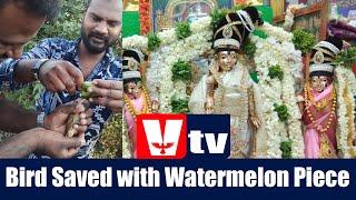 KGF VTV NEWS- Bird Saved with Watermelon Piece- Meenakshi Theater reopen - JDS Blame Party President