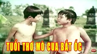 Tuổi Thơ mò Cua và Bắt ốc Full HD | Phim Lẻ Việt Nam Hay Nhất