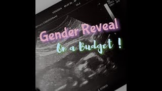 How To Throw A Gender Reveal Party- On A Budget