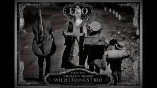 Wild Strings Trio - Wild Strings Trio - Dragon