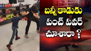 Kickboxing video of Allu Arjun's son goes viral..