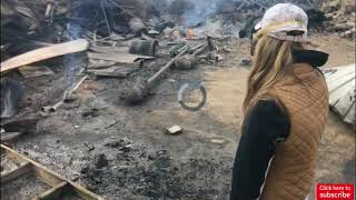 Nearly 30 horses found burned to death by Creek fire in Sylmar