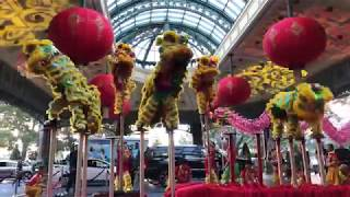Yau Kung Moon USA :: 2018 Chinese New Year Lion & Dragon Dance