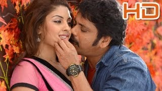 Bhai Movie : Latest Stills - Nagarjuna,Richa