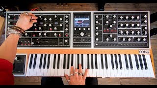 The Moog ONE In Action