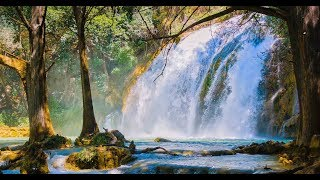 "Peaceful Relaxing Instrumental Music, Meditation Nature Music  ""The Magic of Spring"" by Tim Janis"