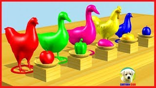 Learn Colors with Farm animals #swimming and eat Fruits colors Cartoon for Children