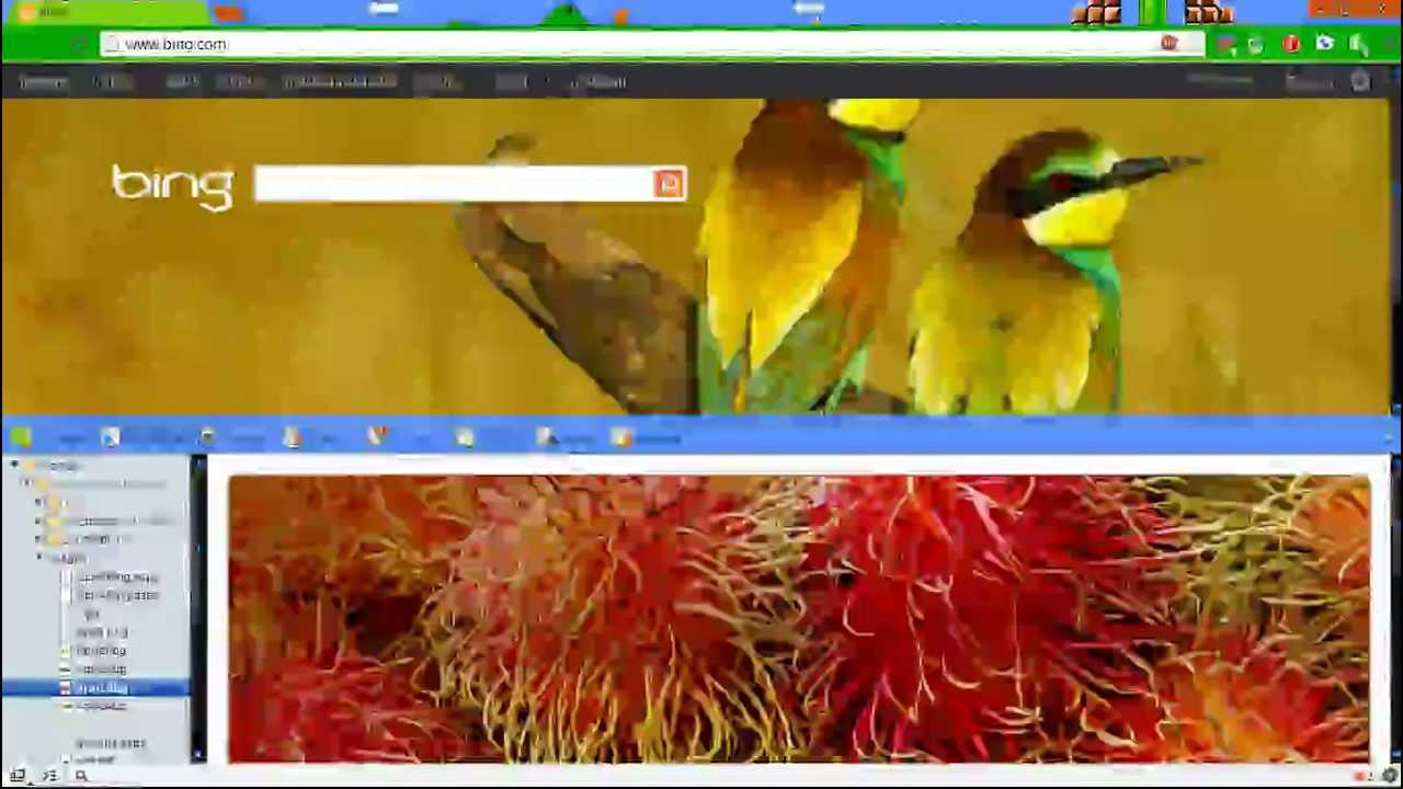 How To Save Bing Wallpapers And Backgrounds