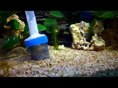 魚缸打氣機 diy|分享魚缸打氣機 diy相關魚缸打氣機價錢與魚缸打氣機…_插圖