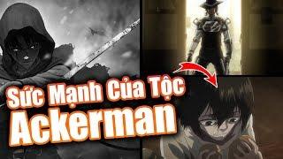 Nguồn Gốc Và Sức Mạnh Của Gia Tộc Ackerman trong Attack on Titan