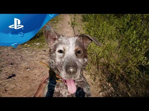 how to far cry 4 co-op ps4 1 copy