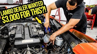 Here's Why A Lamborghini Murcielago Tune-Up Costs $3,000+ (TOTAL RIP OFF!)