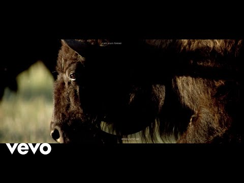 Mumford & Sons - Mumford & Sons and National Geographic present: Rose of Sharon