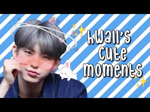 hwall's cute moments