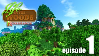 Life In The Woods (A Minecraft Adventure) - EP01 - Let's Start Hungry Mode!
