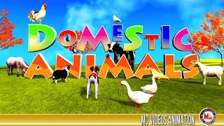 DOMESTIC ANIMALS | Edutainment Video For Kids | Learn Names of Animals