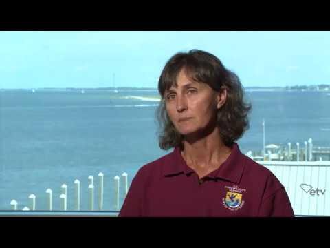 screenshot of youtube video titled Sarah Dawsey - Full Interview | Sea Change