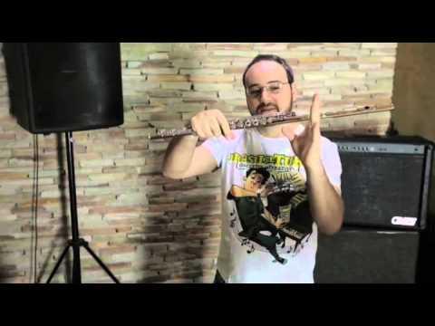 Vídeoaula Flauta Transversa. Parte 2/4