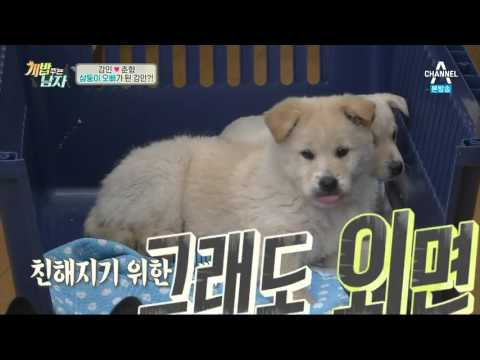 160311 A Man Who Feeds The Dog 개밥주는남자 EP.13 - Kangin & Chunhyang 7
