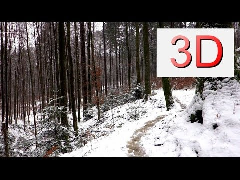 3D Video 4K: JANUARY FOREST WALK (4K Resolution)
