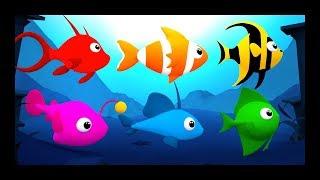 Les petits poissons dans l'eau - Comptines et chansons pour les bébés - Titounis
