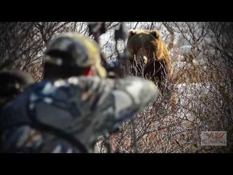 Vabljenje medvjeda na Aljasci