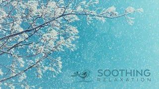 Relaxing Piano Music: Relaxing Music, Spa Music, Yoga Music, Soothing Sleep Music ★119