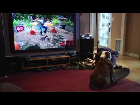 Куче на скејтборд видео игра