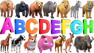 Image of: Schleich Learn Abc Alphabets To For Kids Children Learn Wild Animals Names Sounds Nursery Rhymes 100 Jokes Learn Alphabet With Cartoon Real Animals For Children Abc Wild
