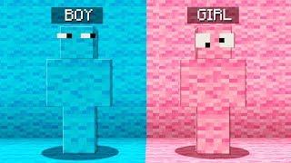 Boy vs Girl Minecraft Hide and Seek Challenge!