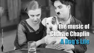 Charlie Chaplin - Dog's Life Theme / Dog Chase
