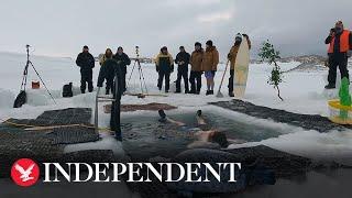 Antarctica explorers take plunge in sub-zero water to celebrate winter solstice