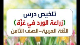 (للثامن) تلخيص درس ( زراعة الورد في غزة ) - لغة عربية     -