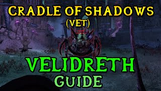 Veteran Cradle of Shadows Boss Guide - VELIDRETH | Final Boss (ESO Shadows of the Hist)