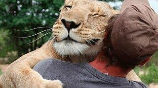 """10 حيوانات انقذت """" حياة البشر """" يا لذكاء الحيوانات"""