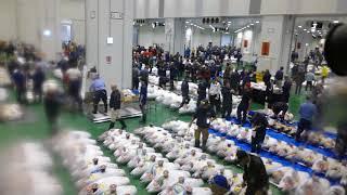Scene from Toyosu fish market's tuna auction on opening day [RAW VIDEO]