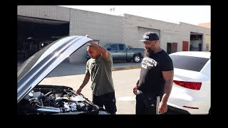 CT Fletcher x Rarebreed Life| Pitbull Torres Trains at the valley of the beast|