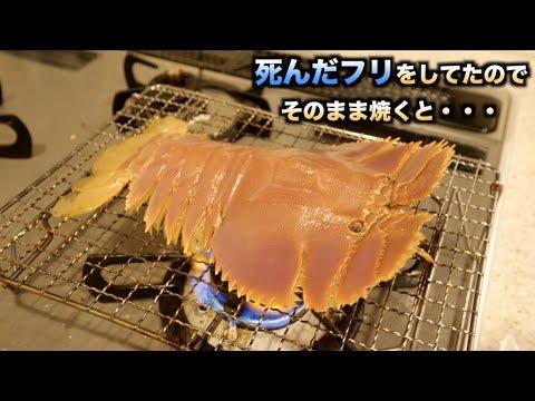 究極の味!!死んだフリをしたエビをそのまま焼いたら驚きの行動に。。。