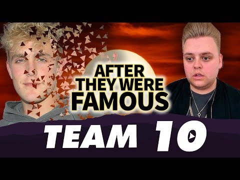 TEAM 10 | AFTER They Were Famous | The Fall of the Pauls ?