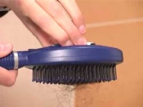 Q Brush  The Self-Cleaning Hygienic HairBrush