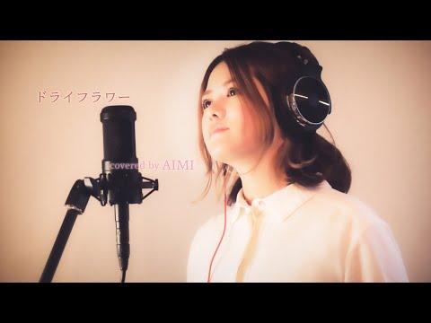 ドライフラワー/優里  covered by AIMI