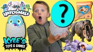 Surprise Hatchimal Egg Treasure Hunt Adventure!
