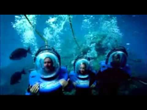 Queenslands Diving Adventures - Great Barrier Reef